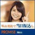 プロミス-120×120-20141020
